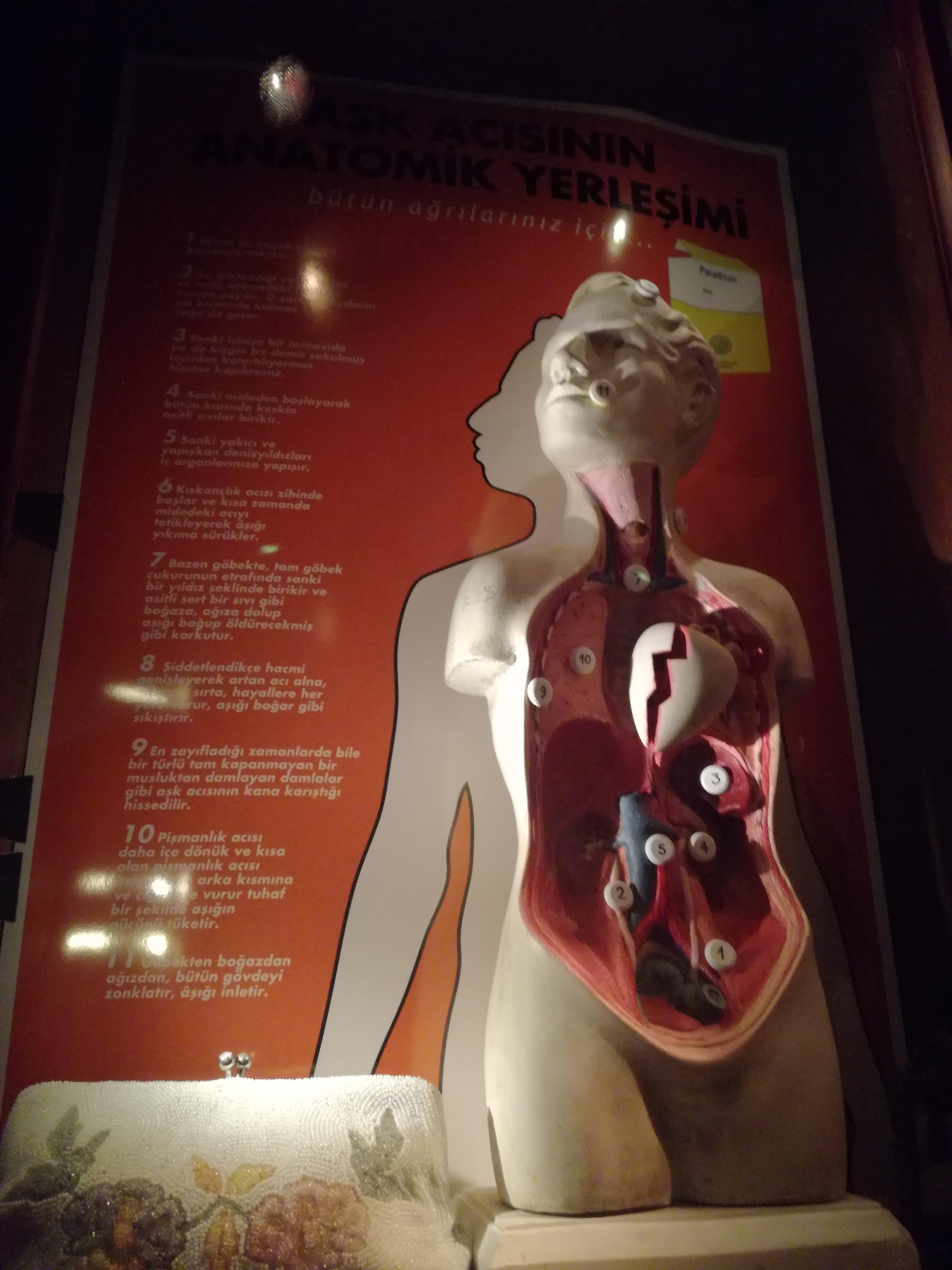anatomia unei inimi frante